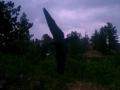 imag0125-afa-eagle